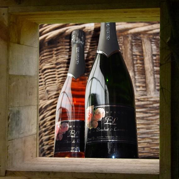 Champagnes - Pépinière Brochet Lanvin